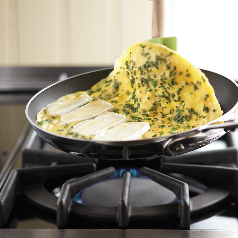 All Clad D5 Stainless Steel Nonstick Omelette Pan 9