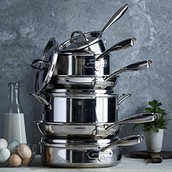 Signature Thermo-Clad Stainless Steel