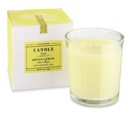 Williams Sonoma Essential Oils Boxed Candle, Meyer Lemon