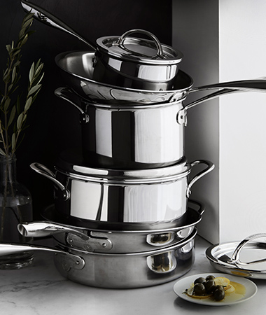 Williams Sonoma Professional Thermo-Clad Stainless-Steel
