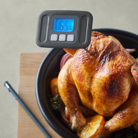 Williams Sonoma Outdoor Long Stem Barbecue Thermometer