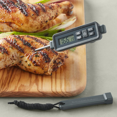 Williams Sonoma Outdoor Waterproof Pen Thermometer